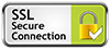 Secure connection logo